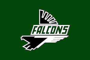 Faribault Falcons